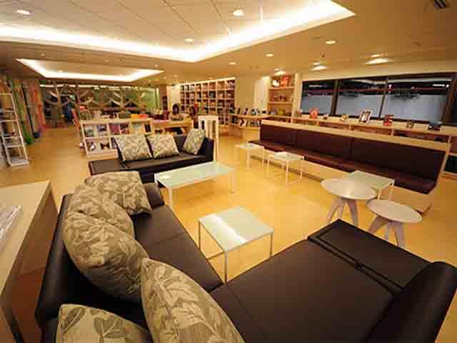 The look of digital libraries one